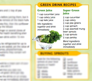 Raw Foods Vegetarianism - Green Drinks